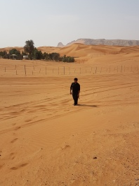 z in desert