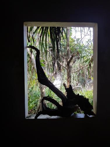 sri lanka window on meditation island
